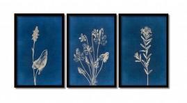 Quadros Grandes Flores No Azul Modernos Salas Moldura 60x40