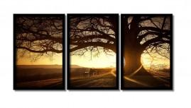 Quadro Decorativo Árvore Por Do Sol 3 Quadros Grandes +brind