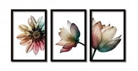 Quadros Decorativos Flores Salas Moldura 60x40